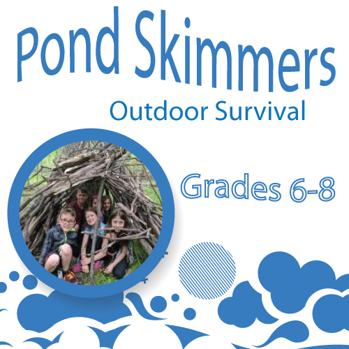 Pond-skimmers---outdoor-survival