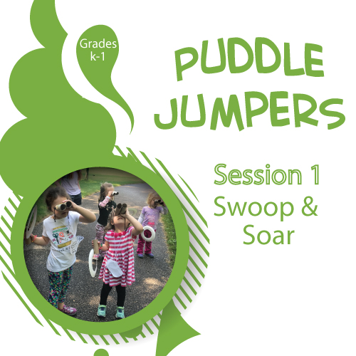 Puddle-Jumpers---Session-1---Swoop-and-Soar